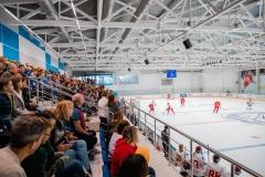 хоккейный матч день защиты детей ск легенда домодедово 5