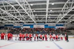 хоккейный матч день защиты детей ск легенда домодедово 8
